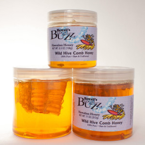 Pick up some of our Wild Hive Honey to celebrate National Honey Month!